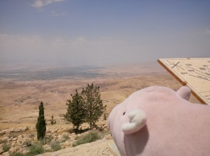 Piggy catching a glimpse of the promised land on Mount Nebo